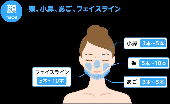 BNLS注射 顔の施術箇所